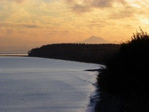 Sunrise Over Dungeness Spit From Sea Cliff Gardens Bed And