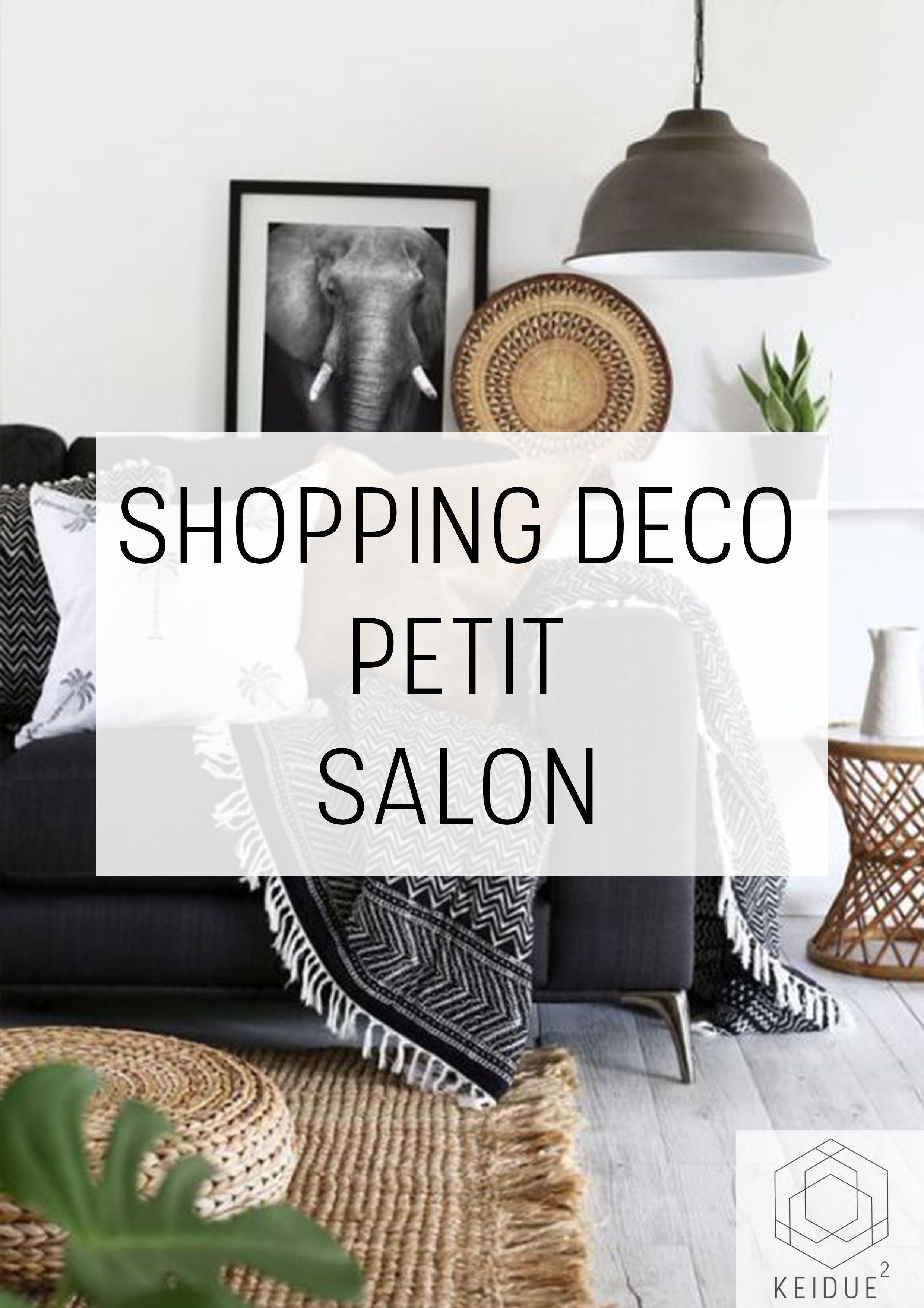 Shopping Deco Comment Amenager Un Petit Salon