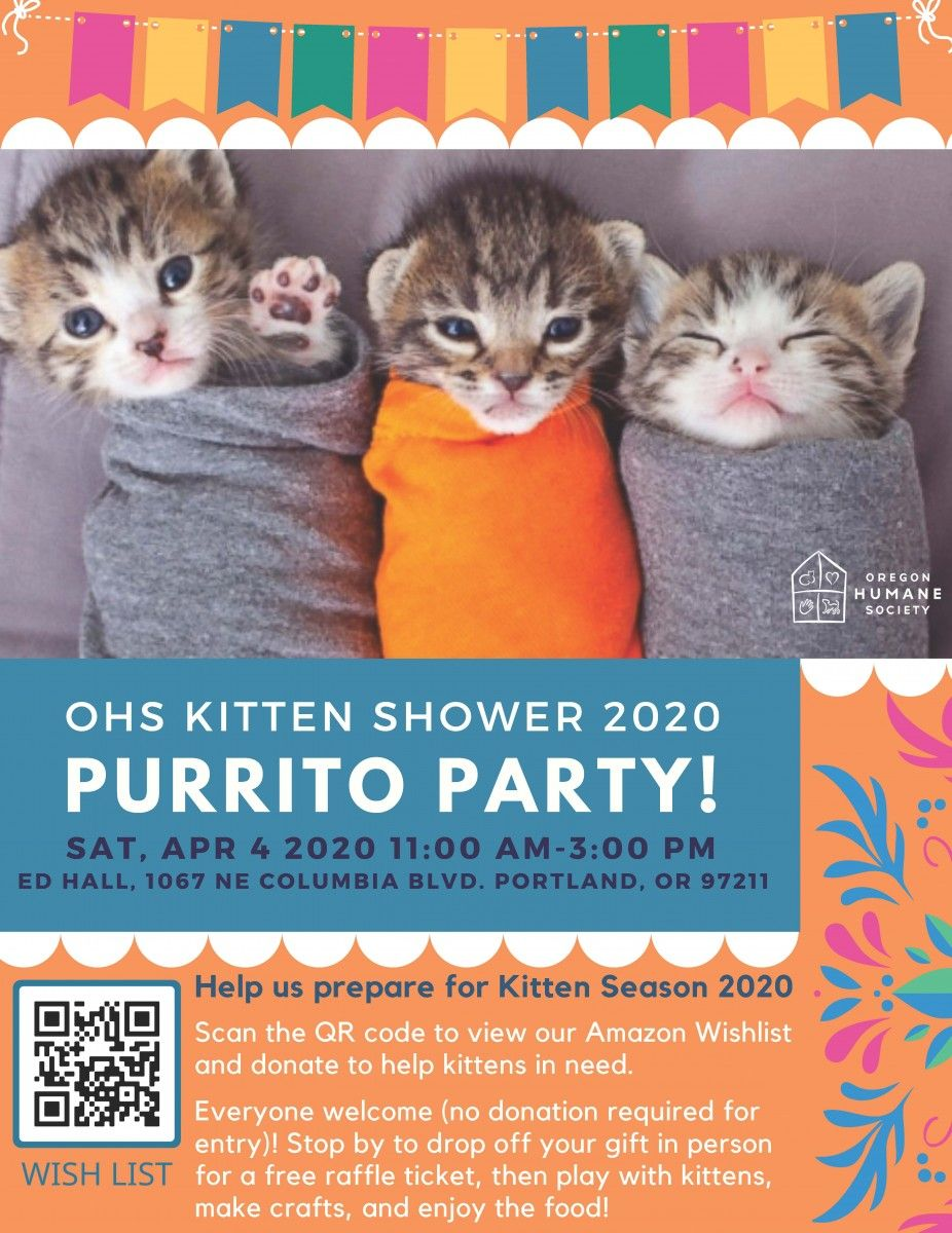 Halloween Humane Society 2020 Oregon OHS Kitten Shower   Oregon Humane Society in 2020 | Kitten, Humane