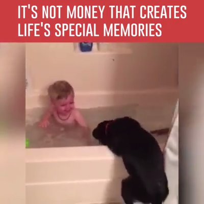 It's not money that creates life's special memories #funnydogs