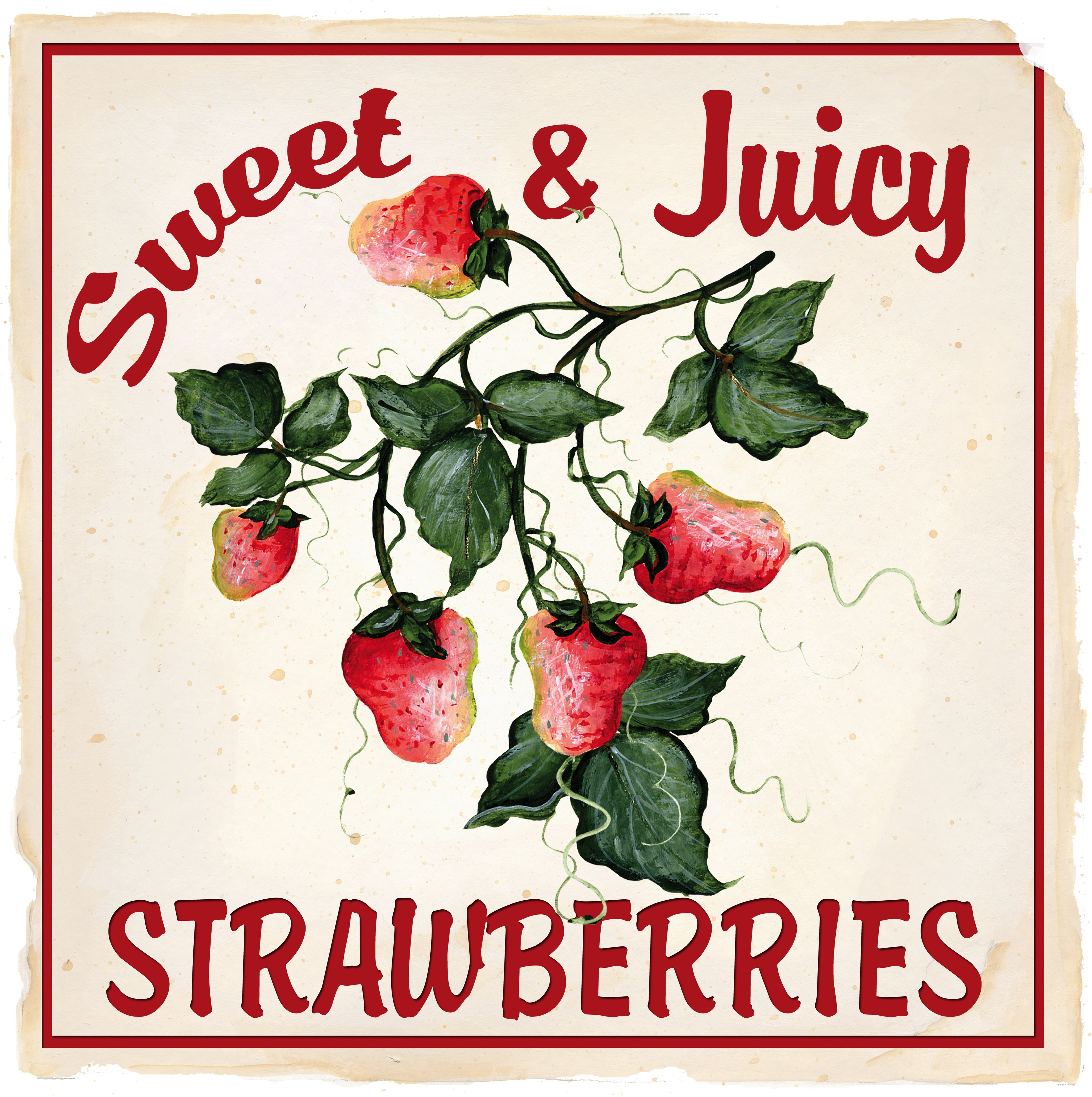 STRAWBERRIES BY KATHY HATCH
