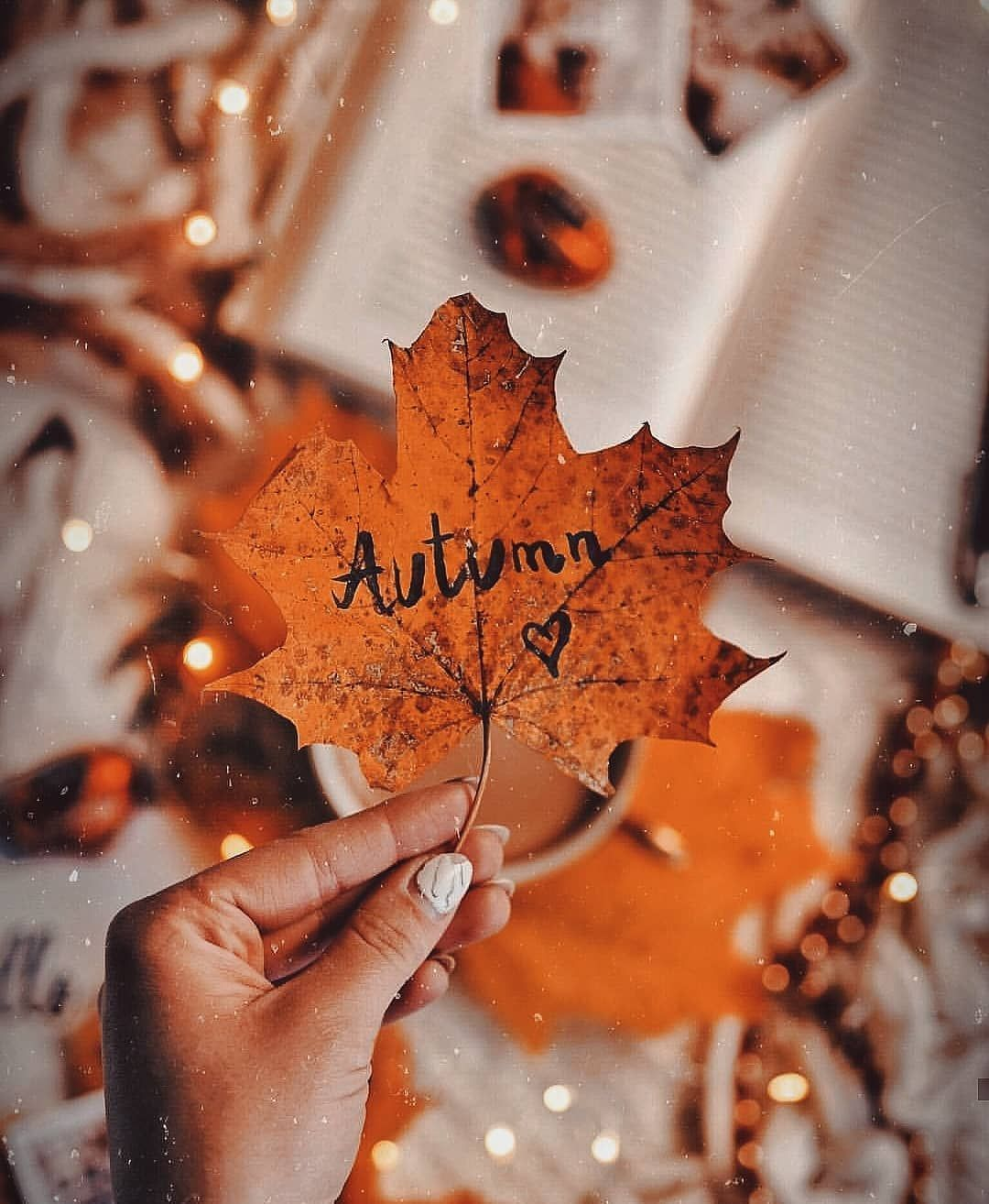 Autumn leaf Autumn leaf #fallwallpaperiphone