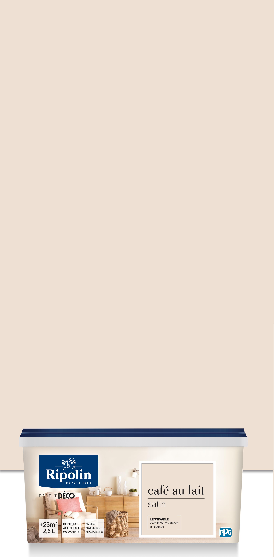 Peinture Gris Bleuté Clair plus chaleureuse que le blanc pur et idéale comme toile de