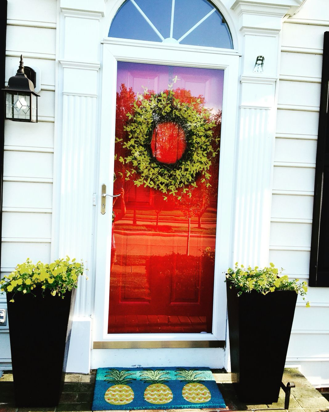 I painted my door red and got a tall planters from
