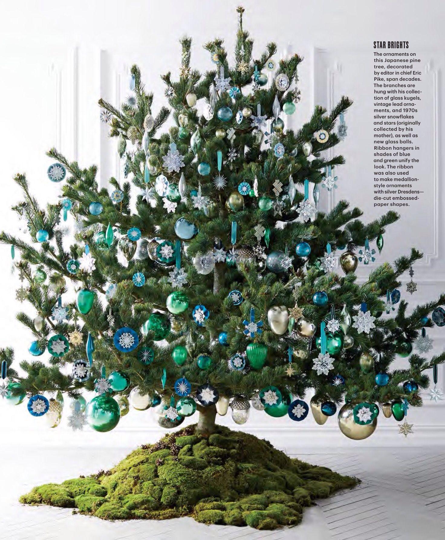 Japanese pine Christmas Pinterest
