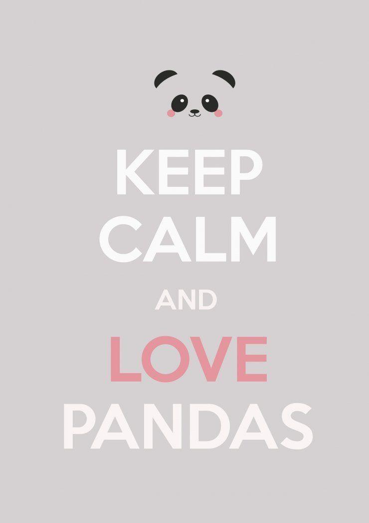 Jeep calm, I love ♡ pancita ♡ | Imagenes para fondo | Panda love ...