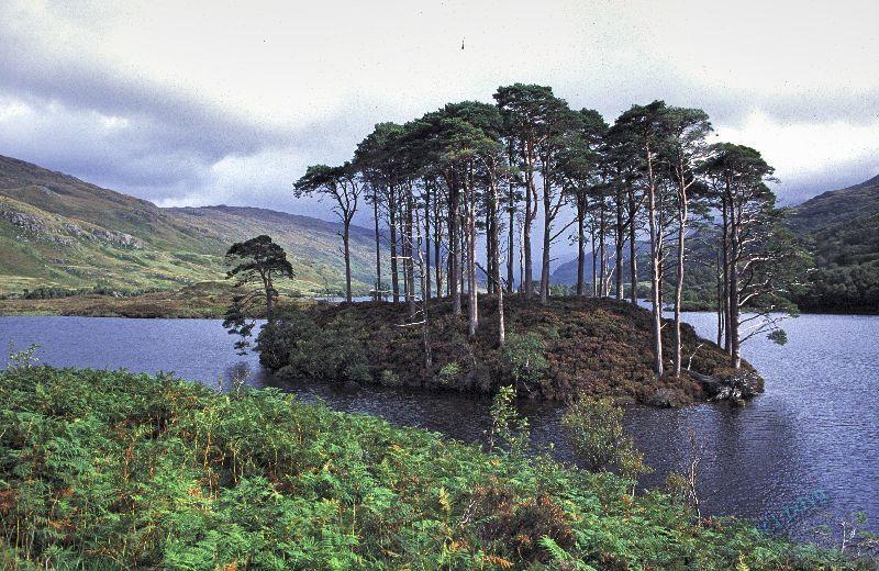Loch Eilt Scotland Schottland Harry Potter Filmlocation Film Location Filmdrehort Drehort Drehorte Locations Schottland