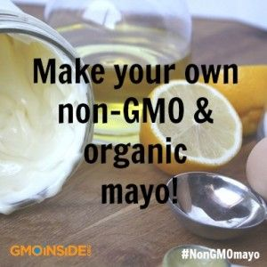 Make Your Own Mayonnaise! 1. Vegan Option – Homemade Grapeseed Mayonnaise by Isa Chandra Moskowitz Isa is one of the most revered vegan chefs for her wide variety of recipes covering every course. She has authored or co-authored a library of cookbooks, runs a restaurant in Omaha, Nebraska, and maintains a website called Post …
