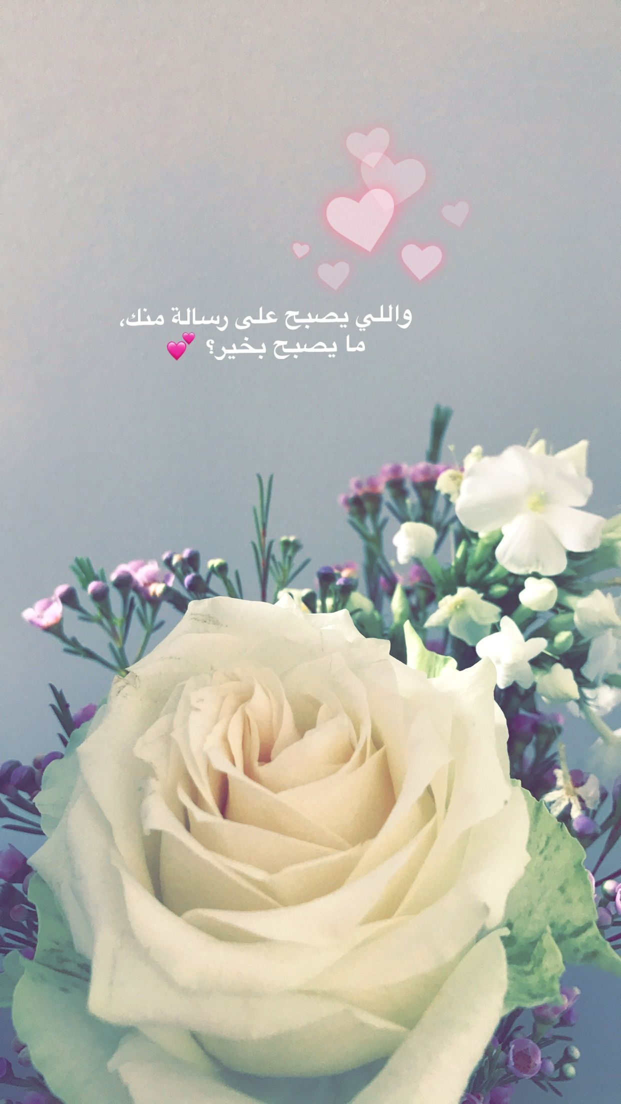 Pin By Janete Alves De Oliveira On All Pictures From My Diary In Snapchat Arabic Funny Flowers All Pictures