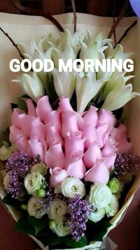 Good Morning To The Wonderful Pinners On My Boards. Thank You ~ MH