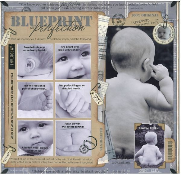 Blueprint for perfection candice greenway scrapbooking babies blueprint for perfection candice greenway malvernweather Images