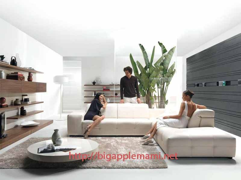 Awesome Modular Living Room Furniture Systems Home Furniture