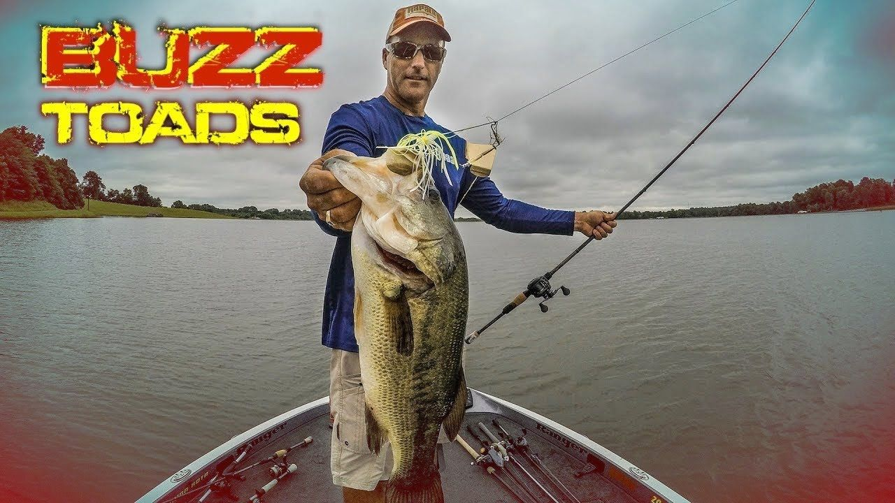 How to Catch More Bass with Buzz Toads YouTube Fishing
