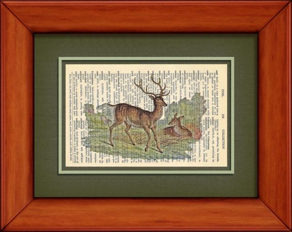 Dictionary Print  1896 Drawing Of Red Deer  6 1/4 x by PagesOfAges, $7.00
