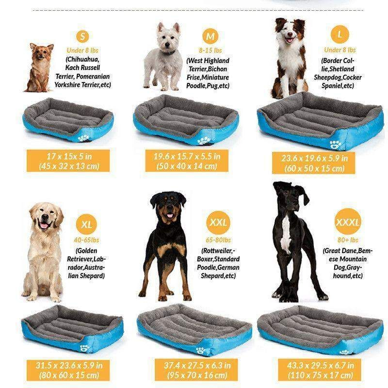 Soft Durable Dog Bed Dog bed, Dogs, Pet dogs
