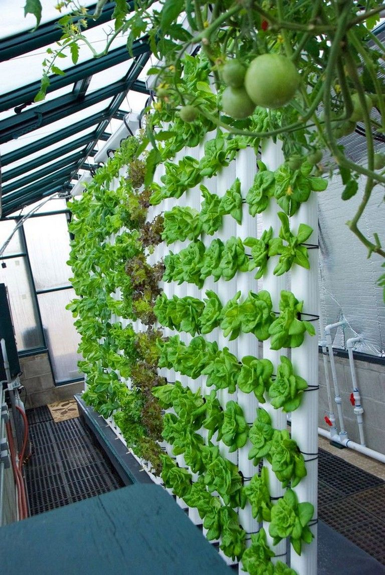 26 Simple Hydroponic Garden Ideas For Good Alternative Garden In