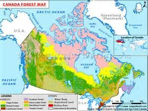 Yahoo Map Canada forest canada map | Canada map, Map, Canada images