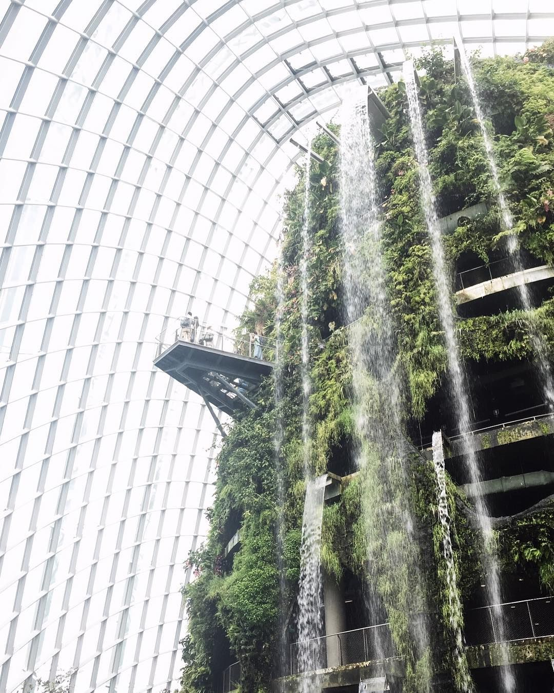 Cloud Forest at Gardens by the Bay #singapore #cerealsingapore by cerealguides