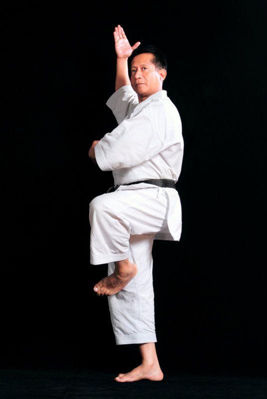 Pin By Marcos Moron Novaro On Fotos De Karate Do Shotokan Karate Shotokan Karate