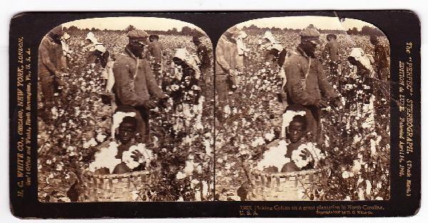 Large size photo