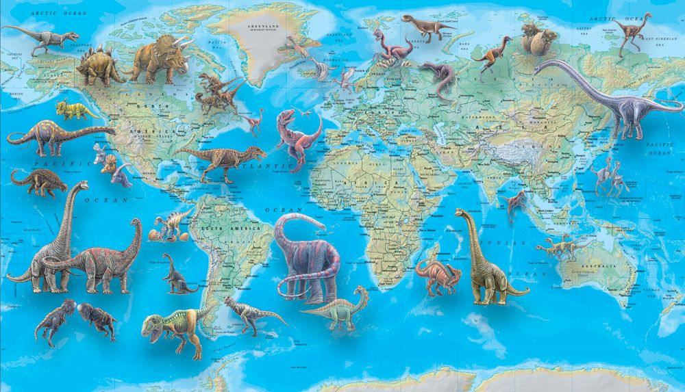 idea maybe get a large map for our geography stuff and