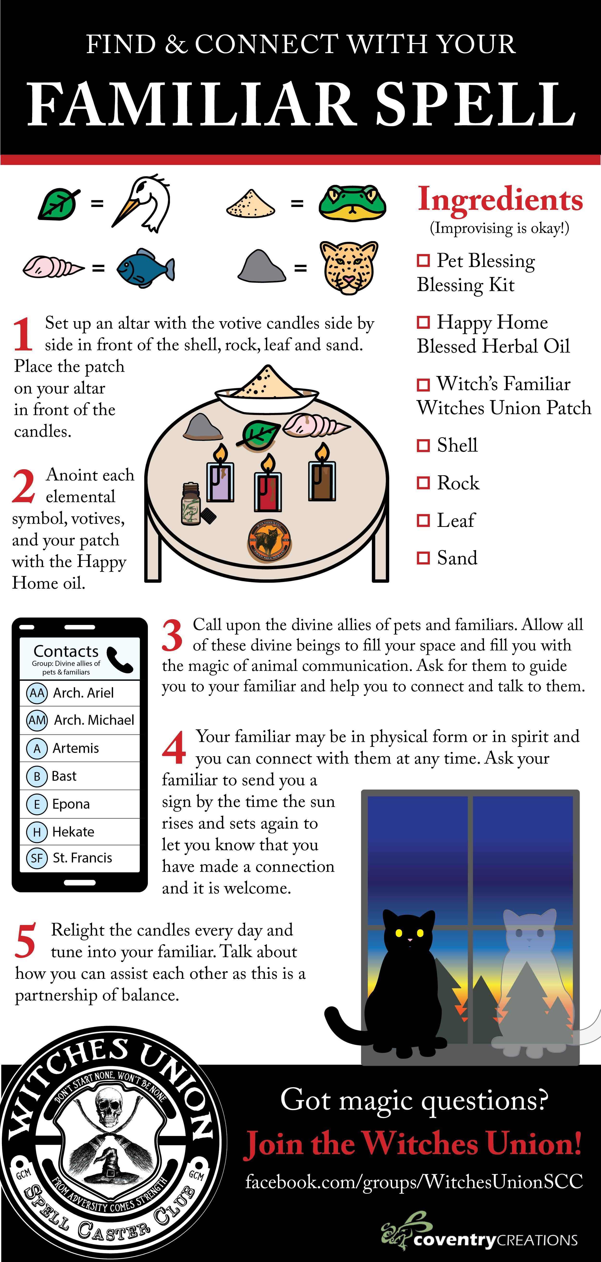 Familiar Spell #candlemagick Find/Connect with your Familiar #spell for a heart warming magical companion! #witchcraft // #forbeginners // #candle // #magick // spiritguide // #cat // #ritual // #witch // #magic #candlecolormeanings