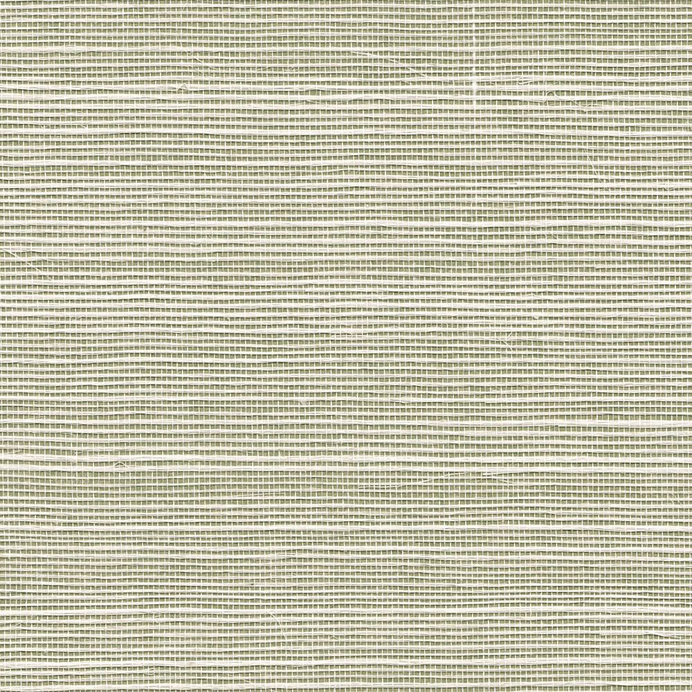 Grasscloth Bermuda Hemp Pear Green 5257 in Pear Green