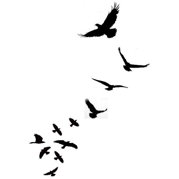 Am Loving These Little Bird Silhouette Tattoos I Don T Know If It S -... ❤ liked on Polyvore
