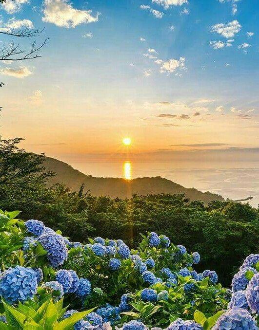 Resultado de imagem para o amanhecer é a parte mais bonita do nosso dia