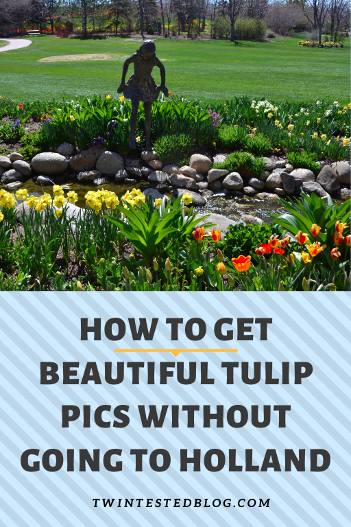 How To Get Gorgeous Tulip Photos Without Going To Holland Photo Spots Photo Instagram Worthy