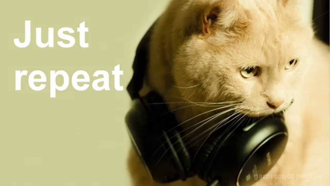 Music For Cats Scientists Create This Song Especially For Cats My Cats Are Interested Rw Cats Cat Entertainment