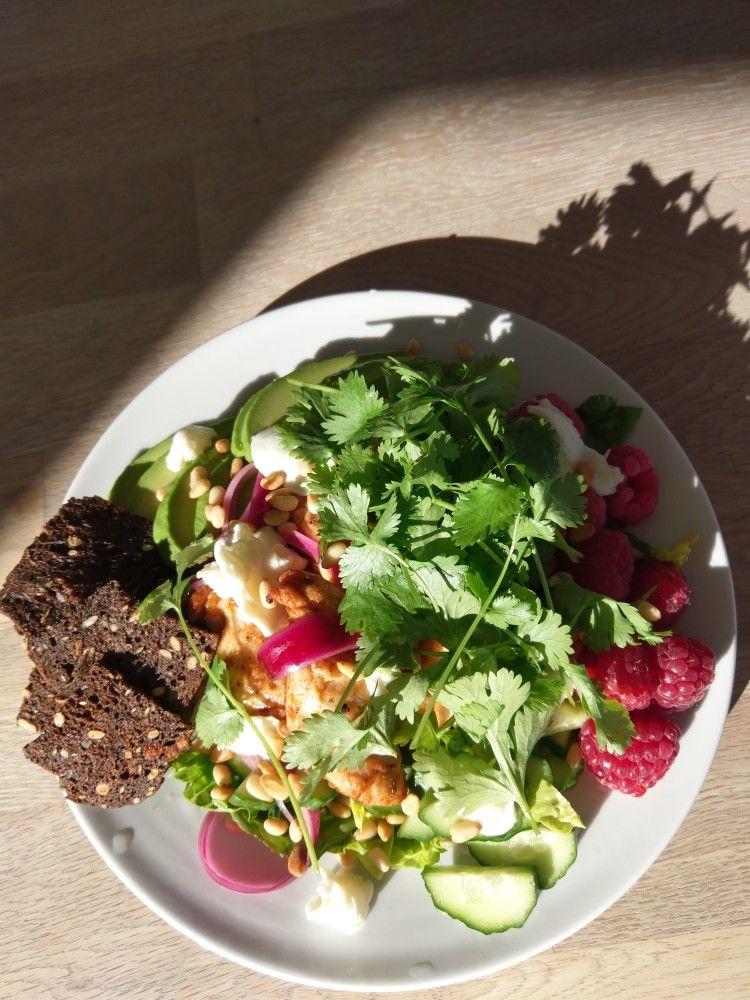 Lækker Salat Med Kylling Avokado Hindbær Mozzeralle Og Agurk