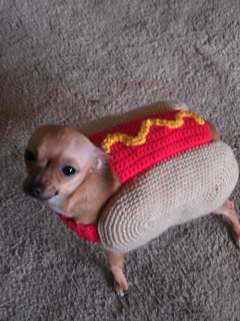 Pin On Dog Costumes