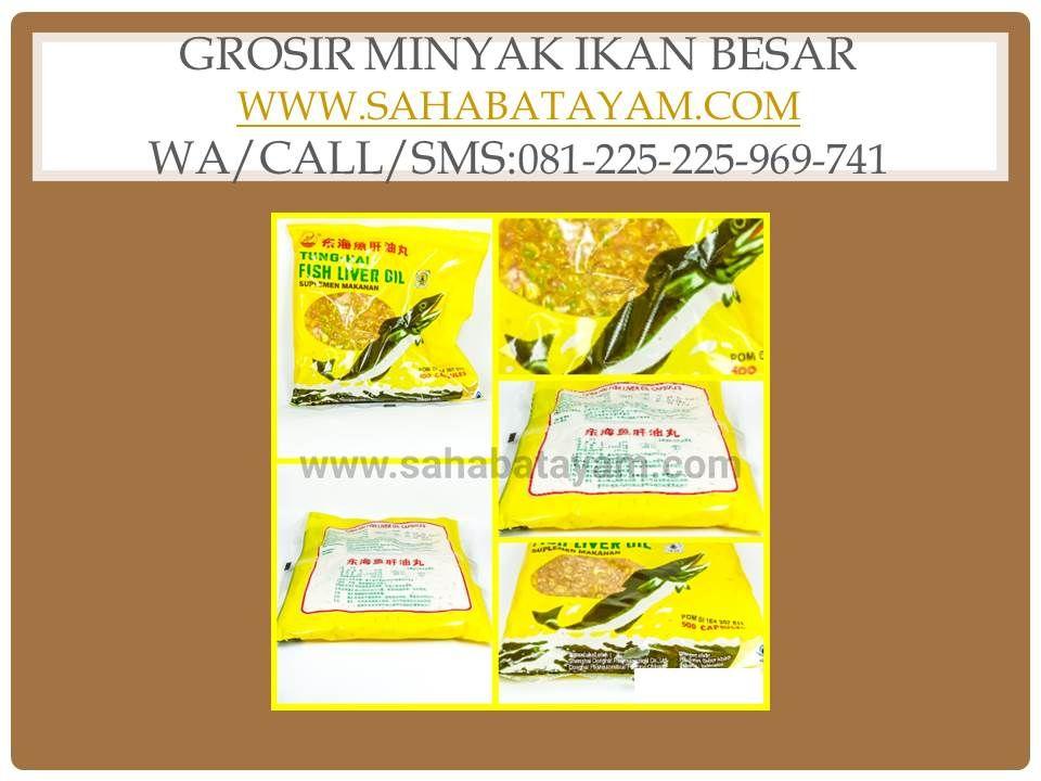 Wa O85 227 9o2o2o Terkeren Lampam Obat Ayam Aduan Semarang Minyak Ikan Ikan Minyak