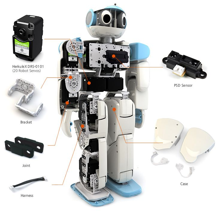 Robot making kits for adults
