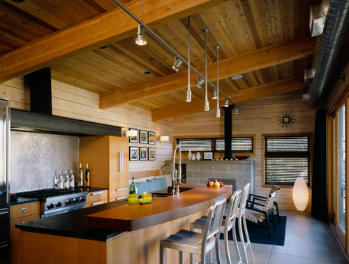 Modern Cabin Interior Design single pitch roofs have long since been a fascination of mine