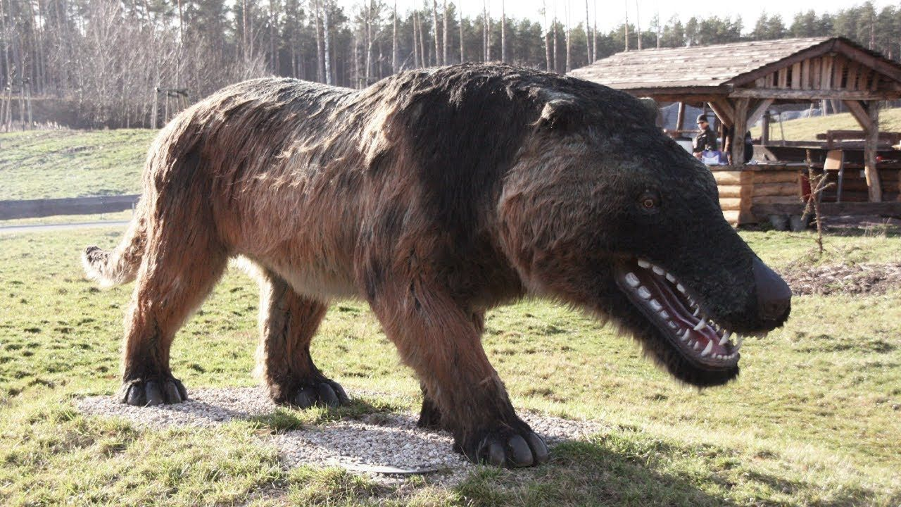 Top 10 Recently Extinct Animals (With images) Extinction
