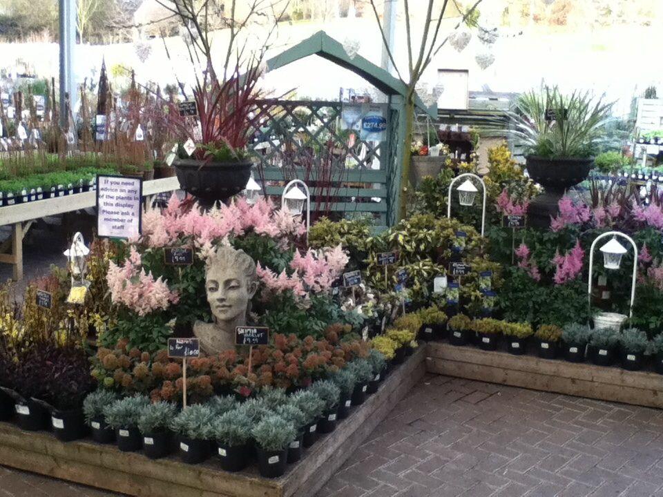 Derby Garden Centre Spring Display Garden Center Displays Garden Center Hanging Garden