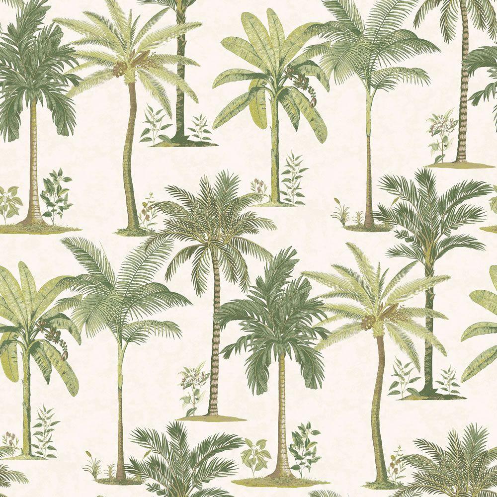Fresco Palm Beach Palm trees wallpaper, Palm wallpaper