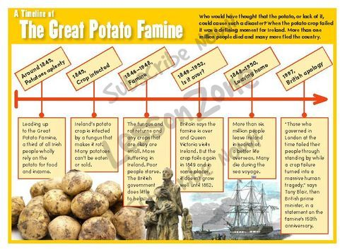 irish potato famine solution What caused the irish potato famine economics featured articles what caused the irish potato famine by mark thornton - march 18, 2017 in the report, archbishop whately attacked today for his free-market stand argued that the solution to poverty is investment and charity.