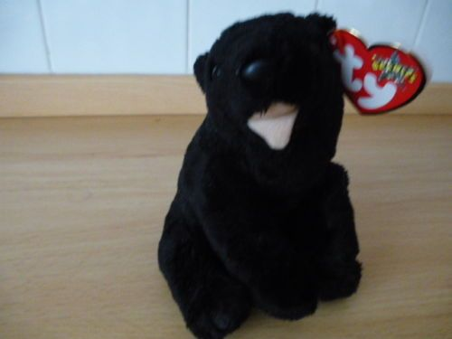 Ty-Beanie-Baby-cinders-the-black-bear-used  2fdd3134871