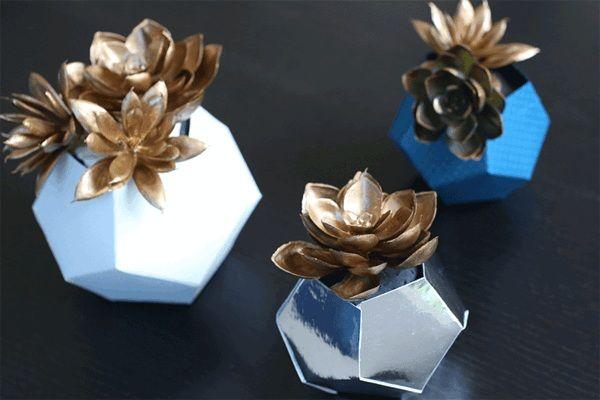 Sukkulente Pflanzen in originellem Blumenkübel als Deko im