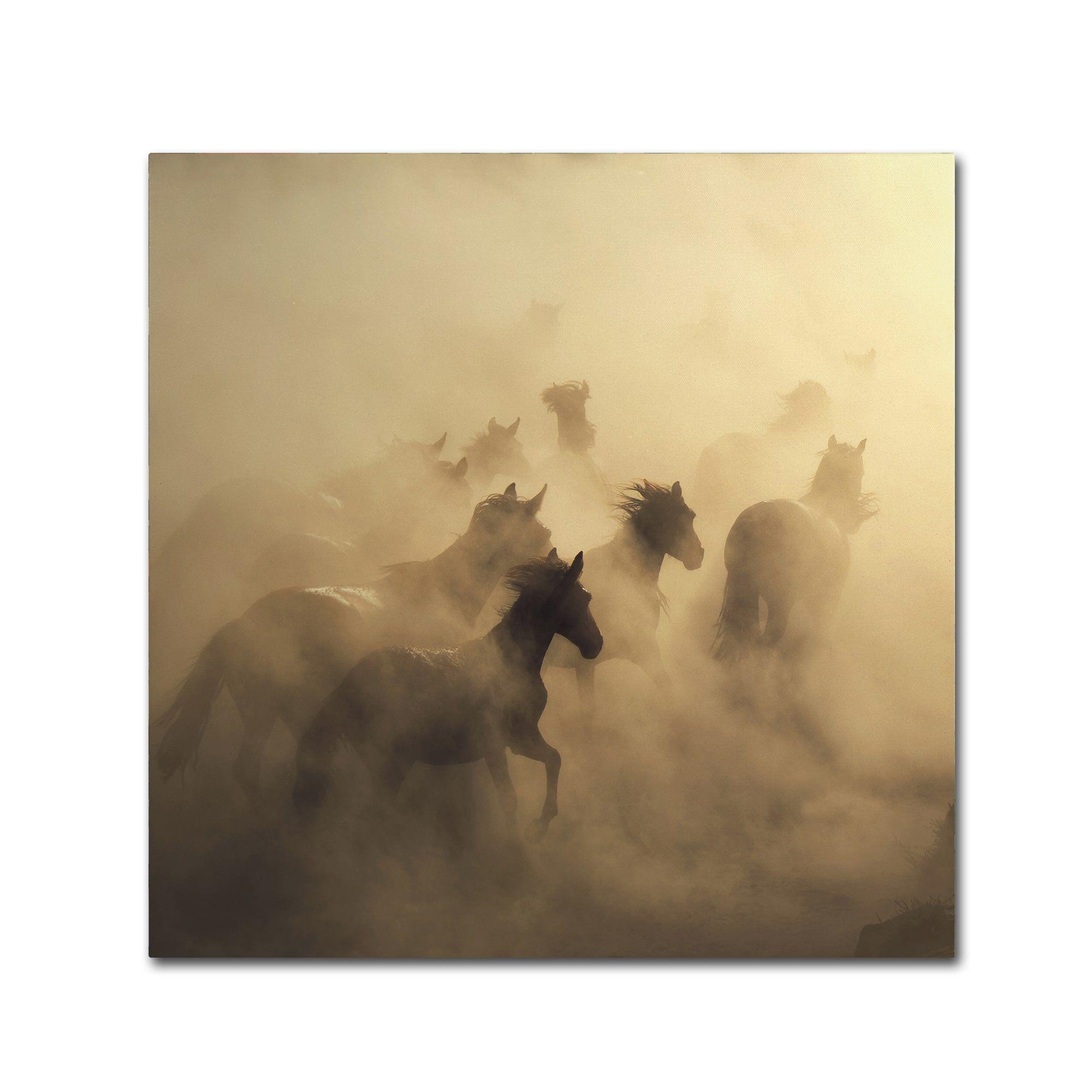 Huseyin Ta?k?n \'Migration Of Horses\' Canvas Art (24x24) | Horse ...