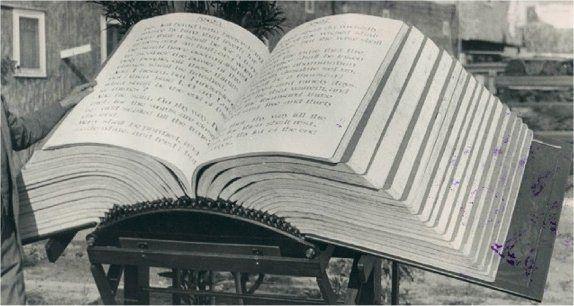 Image result for waynai Bible