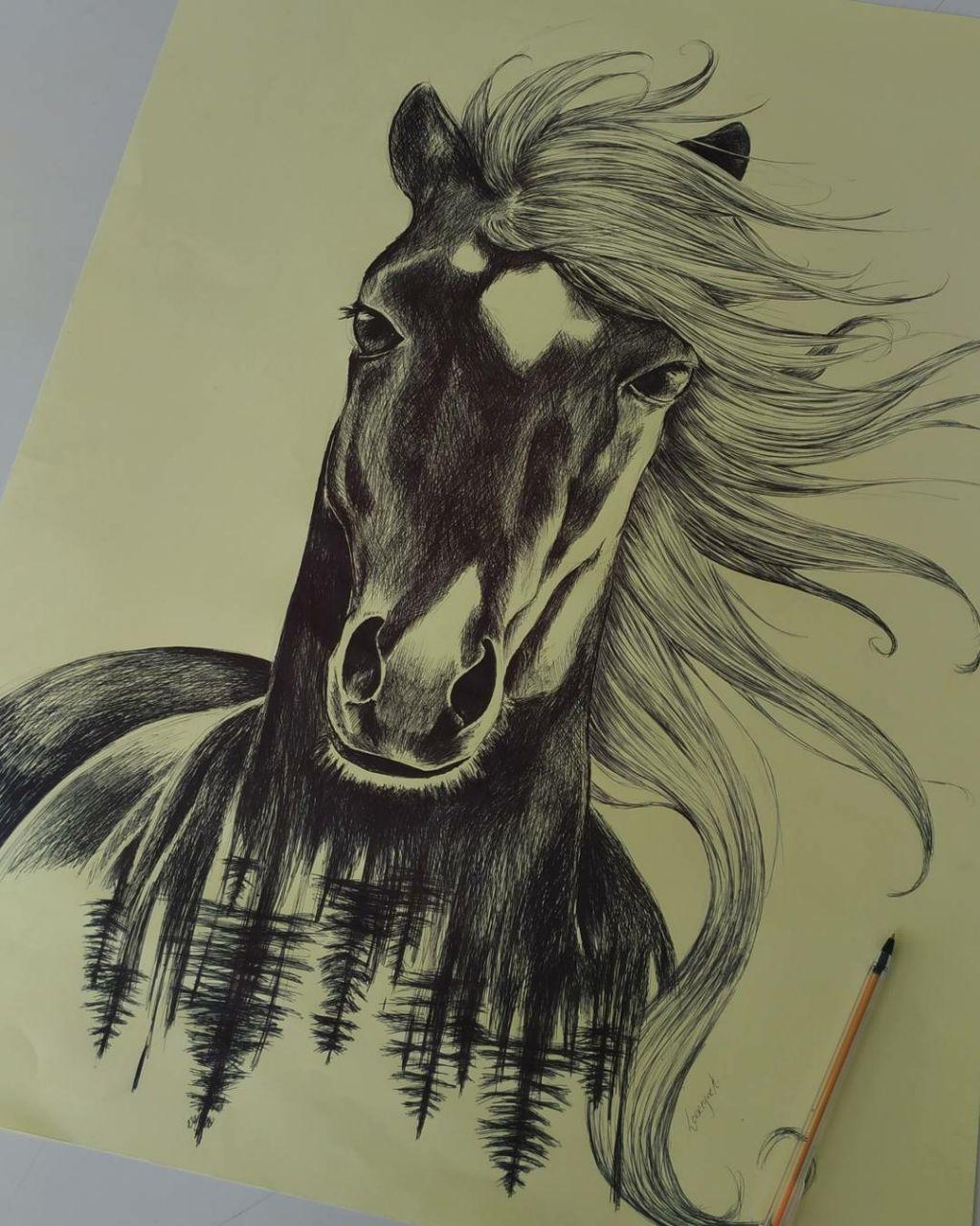 Desenho Feito Com Caneta Bic Cavalo Realista Arte Pintura Com