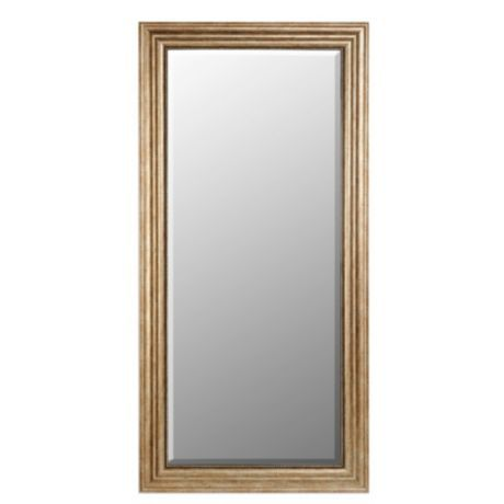 Champagne Full Length Mirror 32x66 Mirror Champagne Mirror