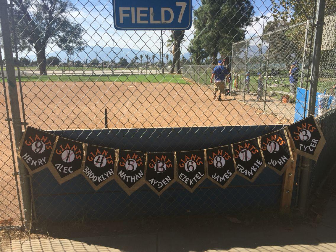 29 best batting cage idea images on pinterest baseball stuff