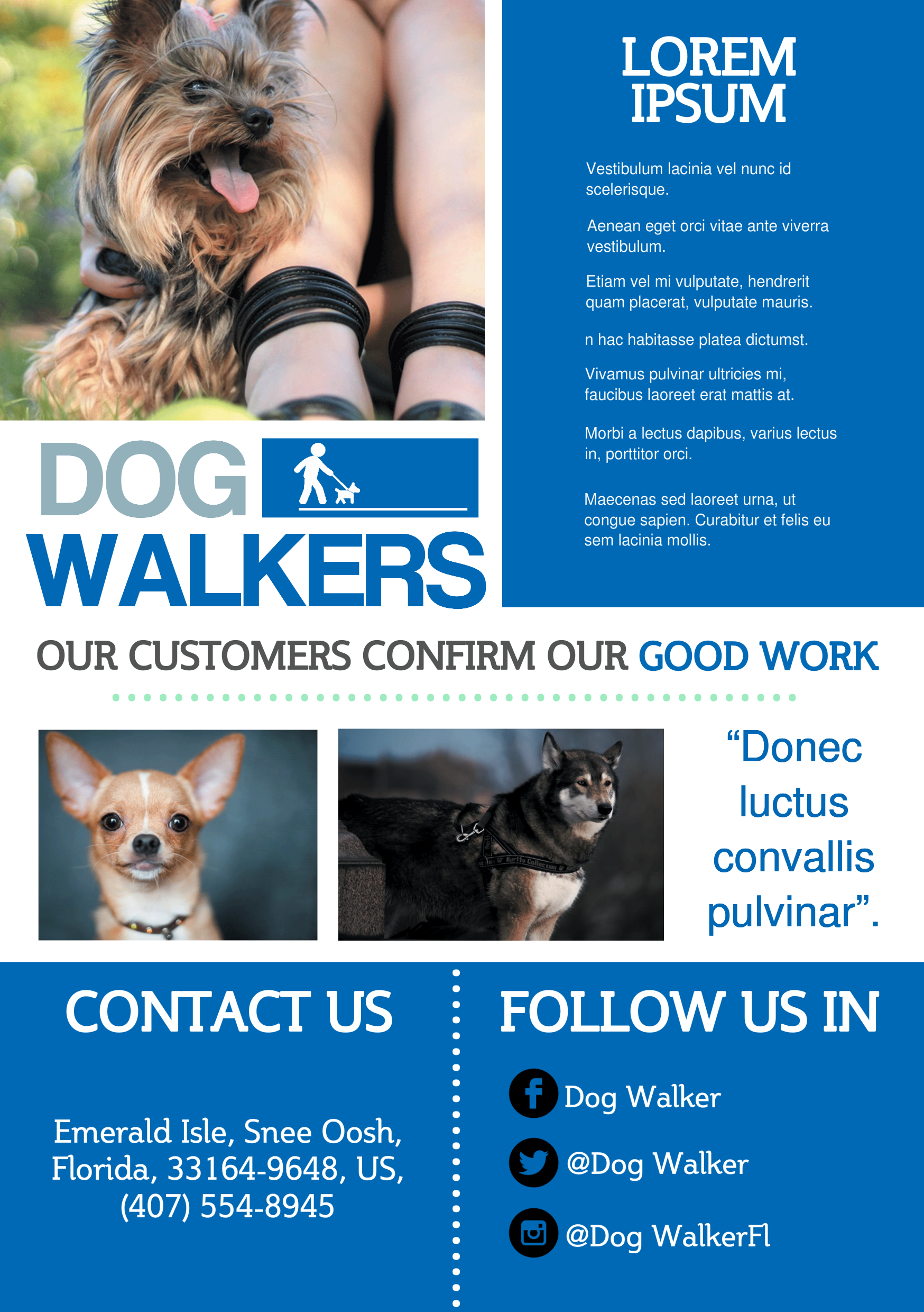 Dog Walker A Promotional Flyer HttpPremadevideosComAFlyer