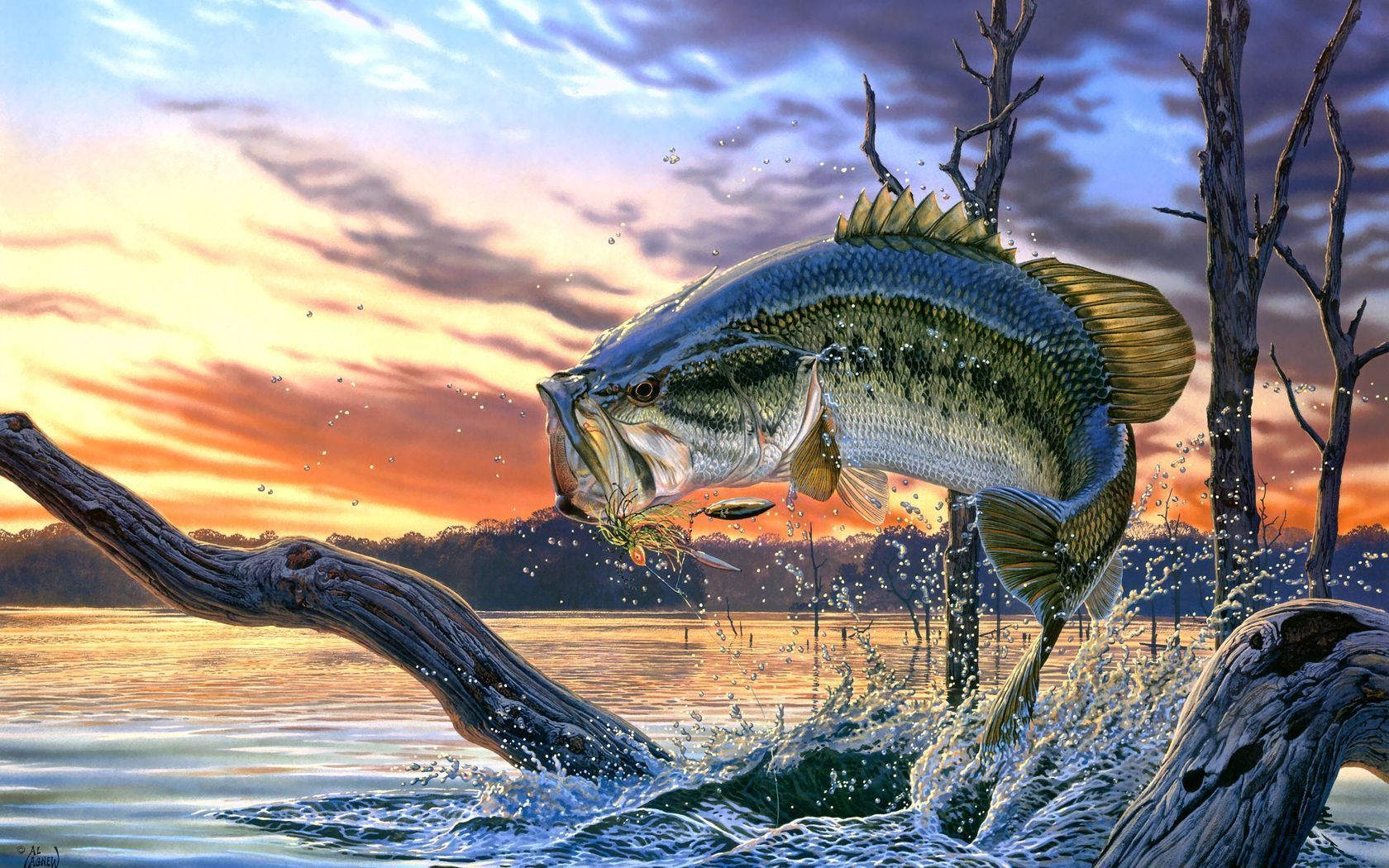 Bass Fishing Wallpapers Hd Fish Wallpaper Fish Lake Sunset Painting