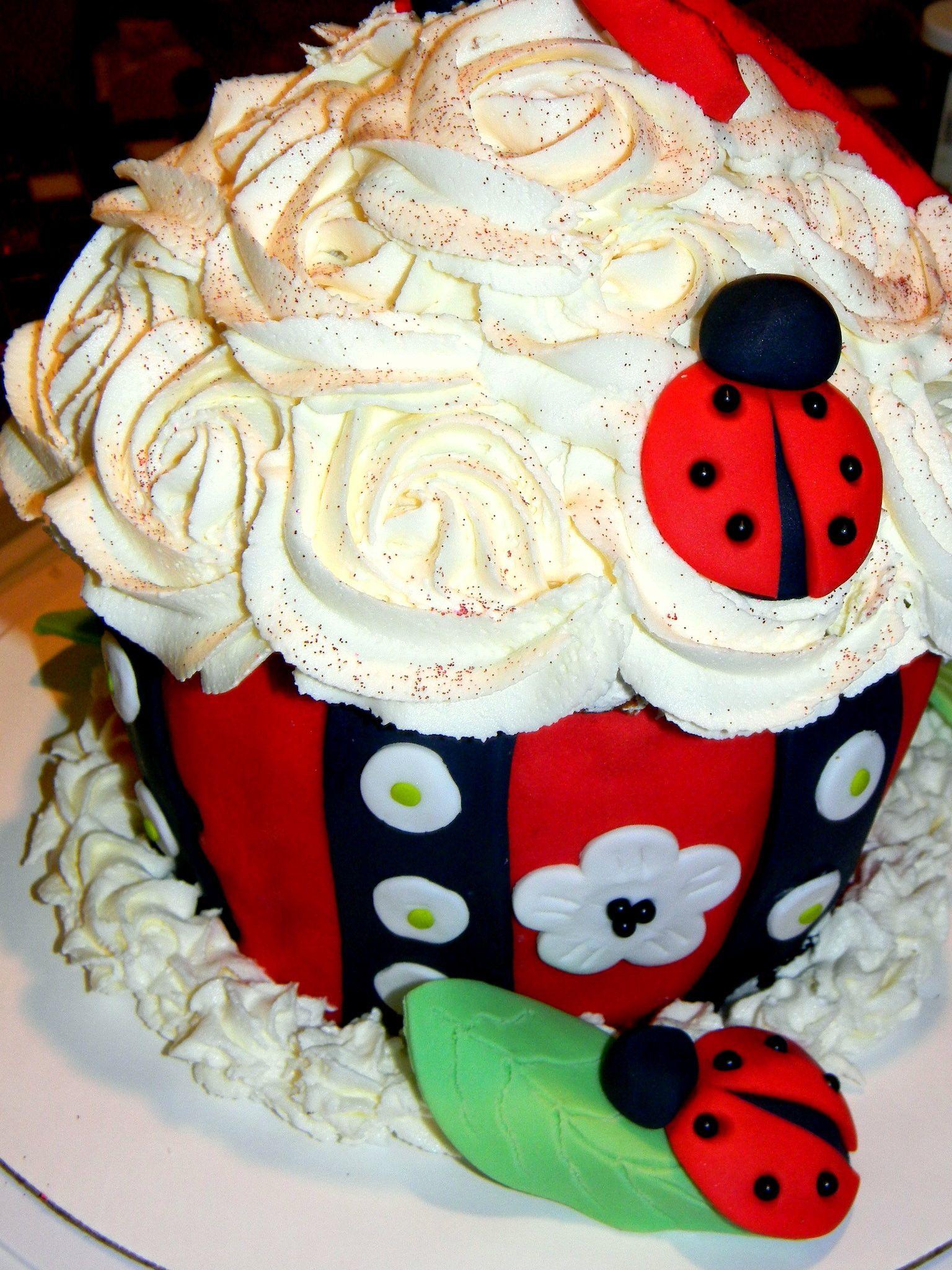Ladybug Smash Cake Lady Bug 1st Bday Birthday Cupcakes Parties